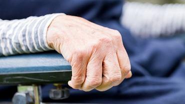 Związek między jelitami a chorobą Parkinsona może być kluczowy