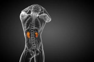 Glomerulopatia lipoproteinowa: objawy, diagnoza, leczenie