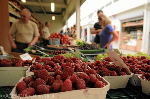 """Bunt plantatorów - od dziś nie zbierają owoców miękkich, bo ceny skupu są za niskie. """"Rząd dał nam umowę, którą można o kant d... potłuc!"""""""