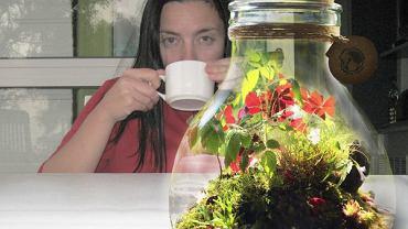 Jar of Forrest