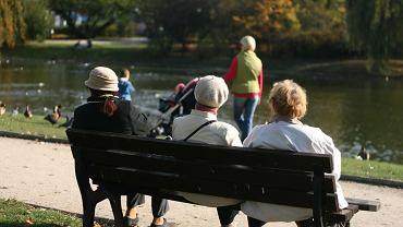 Seniorzy na ławce w parku