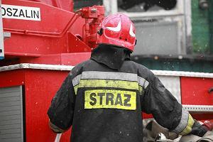 Gigantyczna plama oleju na Wi�le. Stra� stawia zapory