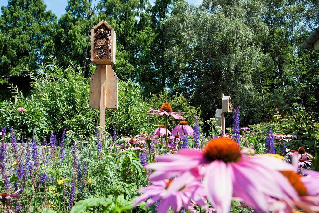 Ogród Botaniczny UJ / ŁUKASZ KRAJEWSKI