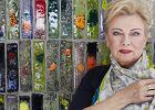 Krystyna Kofta: Wertował moje ''Dzienniki'', szukając odpowiedzi, czy sypiałam z Głowackim