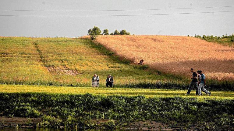 Ziemia rolna to bezpieczna lokata kapitału