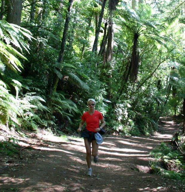 Ścieżka biegowa, okolice Rotorua - Wyspa Północna