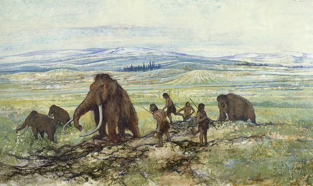 Krótka historia o tym, jak człowiek cofnął miliony lat ewolucji i zmniejszył ssaki