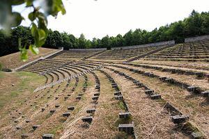 Poznański Budżet Obywatelski. Chcą zrobić miododajny ogród w amfiteatrze na Cytadeli