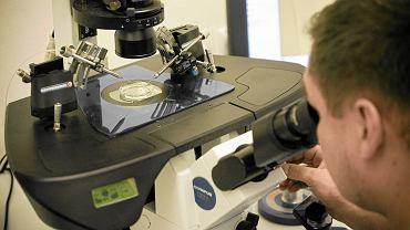 Badanie pod mikroskopem, zdjęcie ilustracyjne