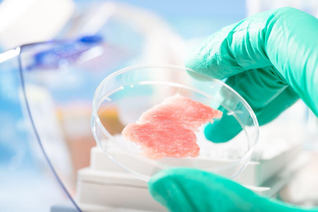 ''Mięso z probówki'' ma szansę okazać się zdrowszym zamiennikiem tego, które produkuje się poza laboratorium (fot. anyaivanova / iStockphoto.com)