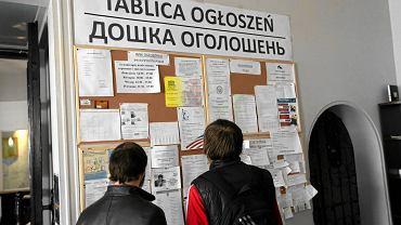 Tablica ogłoszeń w Centrum Ukraińskim przy Nowym Świecie