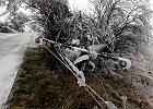 Gmina bez prądu, słupy połamane, wkrótce może braknąć wody [NIESAMOWITE ZDJĘCIA]