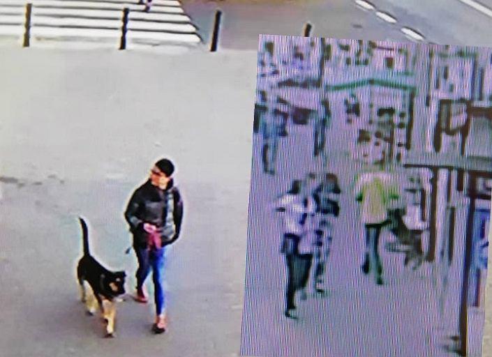 Mężczyzna ukradł psa spod sklepu. Udało się go odzyskać dzięki internautom i przechodniom