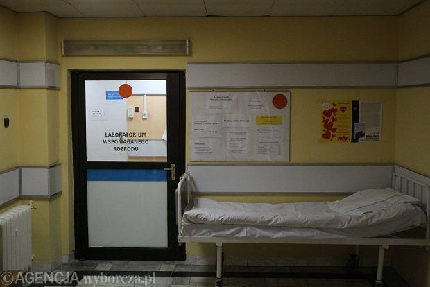 O�wiadczenie dyrekcji szpitala: Dosz�o do b��du w in vitro. Wyra�amy ubolewanie