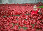 100-lecie I wojny �wiatowej. R�nice w �wi�towaniu mi�dzy Wielk� Brytani� a Polsk� [OPINIE]