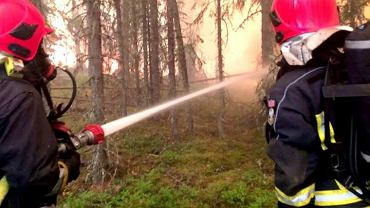Polscy strażacy w Szwecji