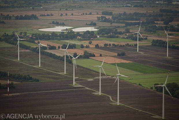 Elektrownie wiatrowe zap�ac� kar� za zabijanie or��w w USA