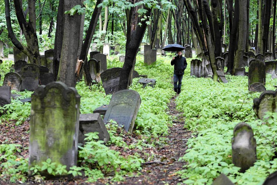 http://bi.gazeta.pl/im/1c/67/13/z20345628V,Cmentarz-Zydowski-przy-Okopowej-na-Woli.jpg