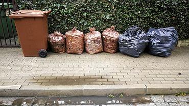 GOAP Poznań. Brązowe pojemniki na odpady biodegradowalne