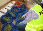 CBŚ przejęło 21 kg narkotyków, ale to nie rekord [ZDJĘCIA]