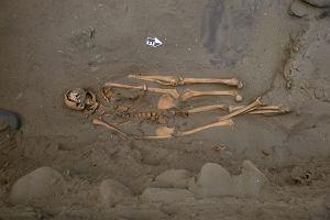 Zagadka ze starożytnego Peru. Dlaczego łowcom rekinów wkładano do grobów dodatkowe części ciała?