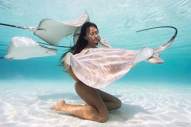 Rava Ray nurkuje i pozuje do zdjęć z morskimi stworzeniami
