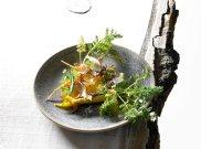Sa�atka z marchewk�, borowikami, konfitowanym ��tkiem i szczawiem