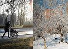 Od poniedzia�ku och�odzenie? Meteorolog: Zima czai si� w pobli�u Polski