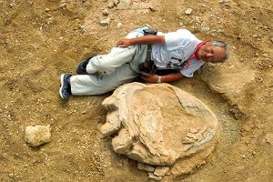 Największy dinozaur świata - w odcisku jego stopy mieści się człowiek