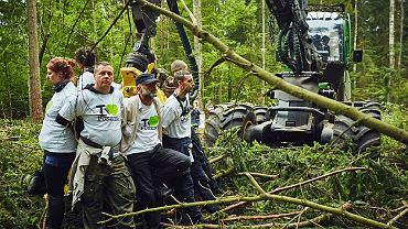 Protest Greenpeace'u przeciwko wycince Puszczy Białowieskiej w okresie lęgowym ptaków. 30 maja 2017