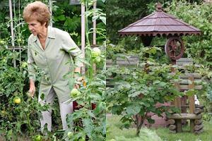 Danuta Wałęsa w ogrodzie.