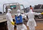 1,9 tys. ofiar i 3,5 tys. os�b zaka�onych ebol�. B�dzie 20 tys.?