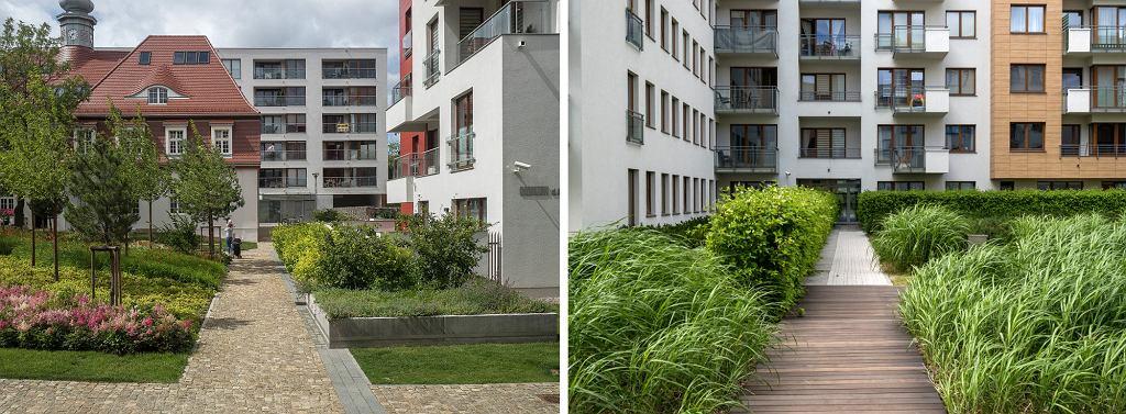 W tej części osiedla piesze trakty, pozbawione samochodów, obsadzone są zielenią (fot. Filip Springer)