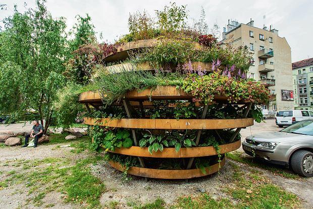 Domek na drzewie, betonowa �awka, poduszkowy je�... Jak zmieniaj� si� zaniedbane wroc�awskie podw�rka