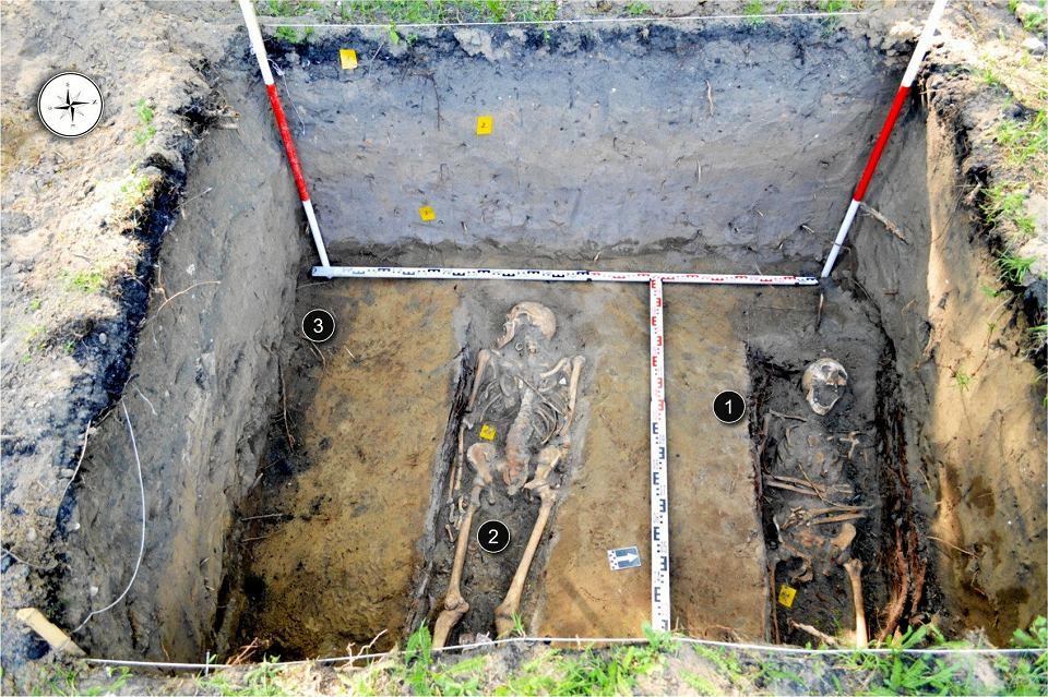 Szkielety odkopane w parku Witosa w Bydgoszczy przez archeologów w kwietniu