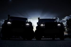 Land Rover Defender od Vilnera