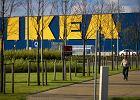 Ikea otworzy si� w Lublinie w 2017 roku