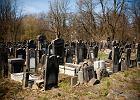 Cmentarz �ydowski w �odzi