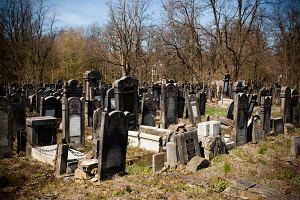 Polska. Cmentarz �ydowski w �odzi