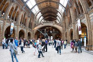 Londyn w lutym? Zobacz, jakie darmowe atrakcje znajdziesz w Londynie!