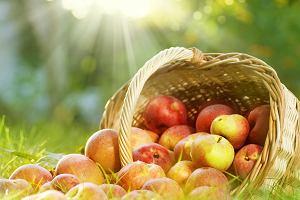 Owoce a kalorie: jabłka