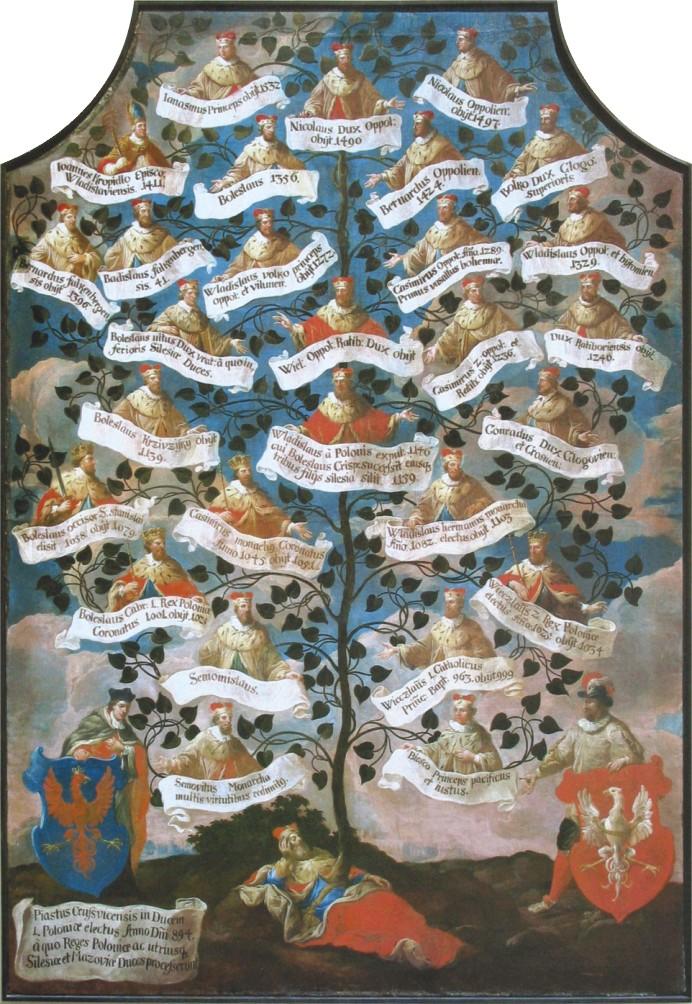 drzewo Piastów