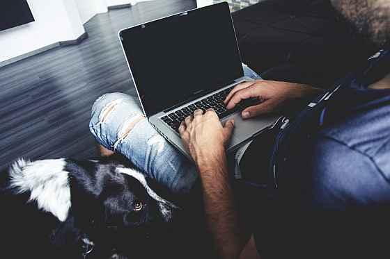 Blog na Blox.pl, Wordpress blog, Blogspot czy własna domena?