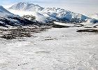 Alaska: uwaga, wieloryb na drodze