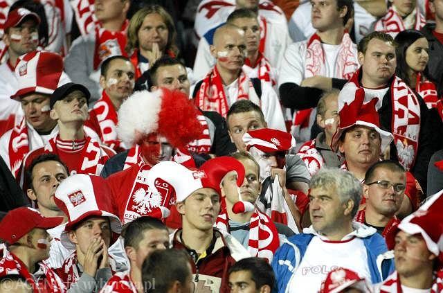 Polscy kibice na stadionie Śląskim