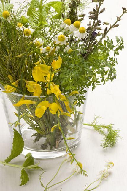 Dieta bogata w fitoestrogeny mo�e �agodzi� objawy menopauzy.