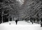 Mróz, zamiecie i zawieje śnieżne. Przyszła zima