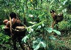 Brazylia, Amazonia - podróże Grzegorza Baszczyńskiego