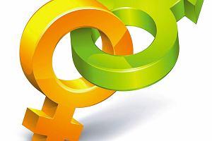Histeria Gender [LIST]
