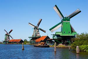 Holandia pogoda